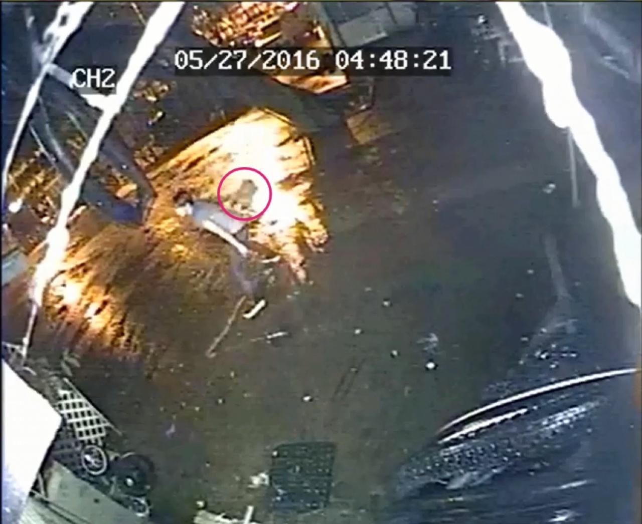 星期五凌晨出現的虐貓男以布將小貓(紅圈示)包起,再拋上簷篷。(閉路電視片段截圖)