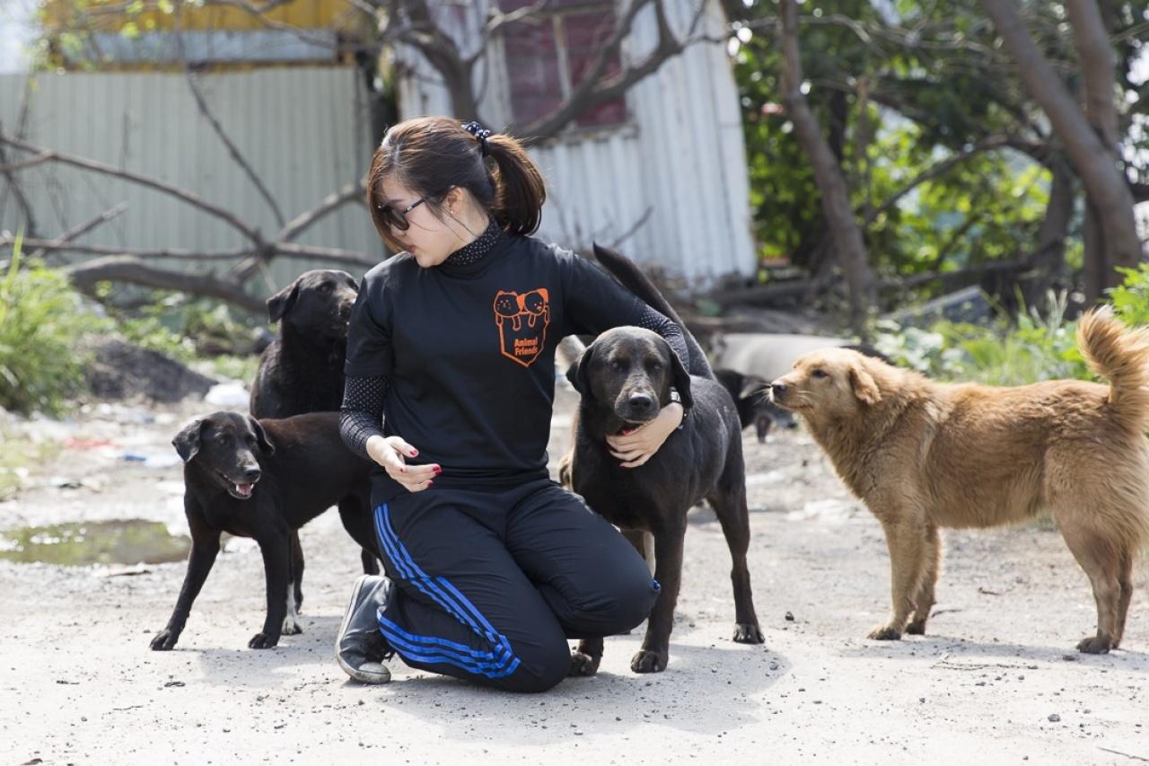Phoebe說:「絕育之後再想要狗狗大可以領養,而已經生活在我們周圍的動物,必須善意對待。」(馬熙烈攝)