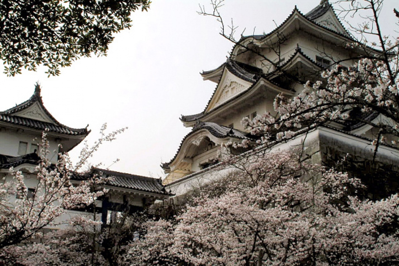 日本伊賀流忍者博物館的所在地伊賀上野城。(Getty Images)