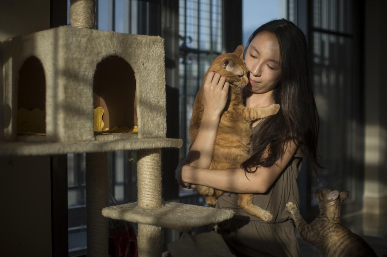 貓咪能覓得溫暖的家,就是貓義工Jane的最大動力。(李澤彤攝)