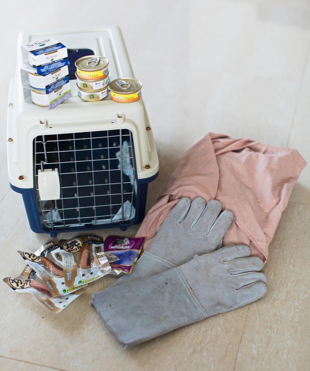 每次出動捉貓做絕育,Jane都以帶備以上工具,但也不等如一定順利捉得到貓。(李澤彤攝)