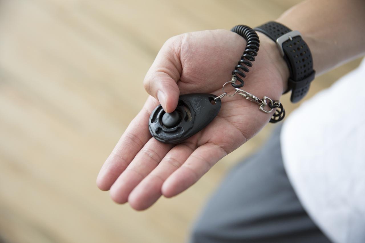 訓練用的響片有如懷舊玩具「啪啪蟬」,按下會發出「的嗒」聲響。(龔嘉盛攝)