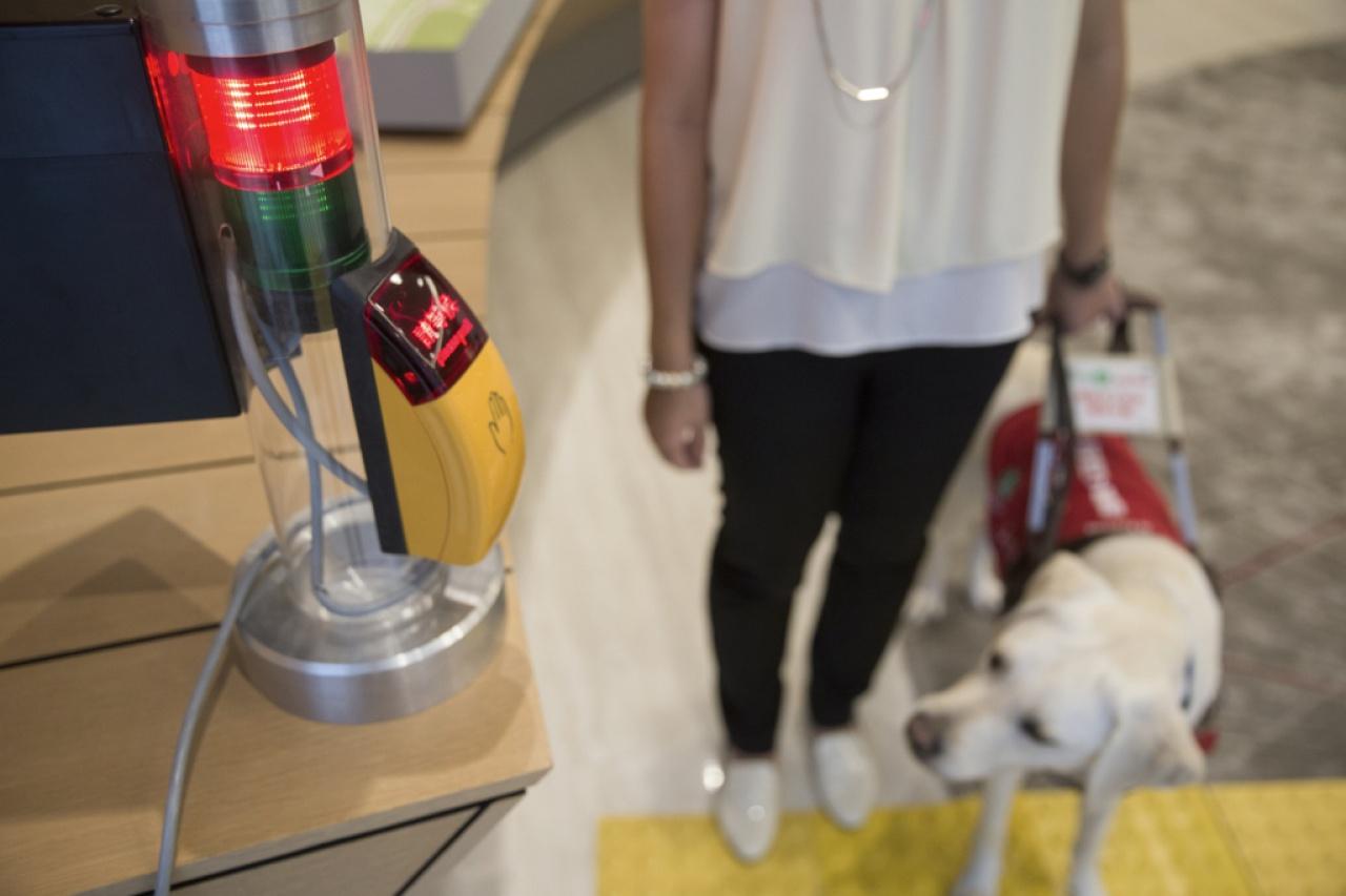 過馬路是視障人士出外最常遇到的場景,導盲犬可以引導視障人士避開障礙物,順利過馬路。(黃永俊攝)
