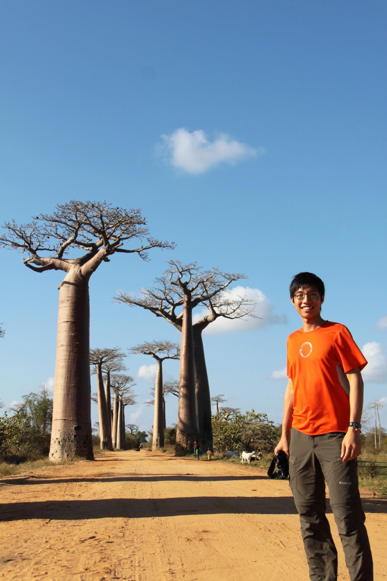 Xoni 於2011年協助帶領大學生生態考察,到訪非洲馬達加斯加。圖為著名的猴麵包樹大道和列為瀕危物種的Grandidier's Baobab。(受訪者提供)