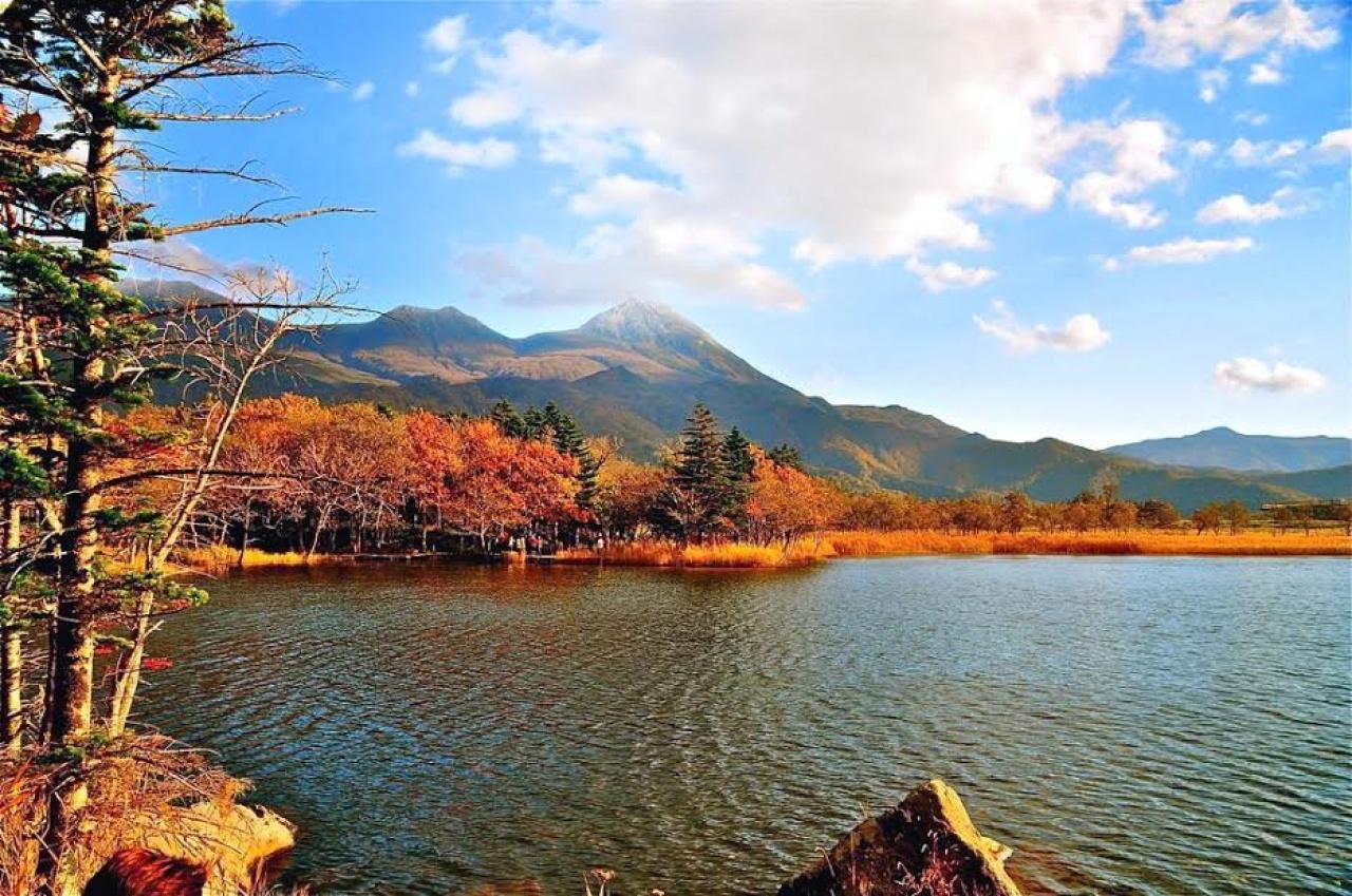 不少港人愛遊日本。(縱橫遊提供)