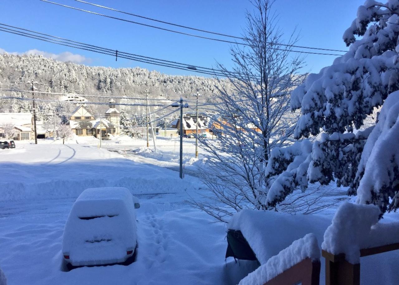 糠平一晚下雪後的景象。(網絡圖片)