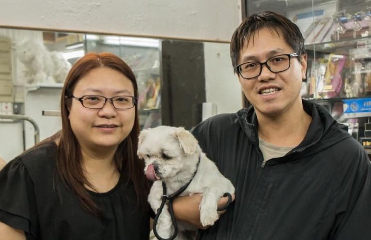 養了三年的西施狗,主人Pearl拍照時說:「我不敢靠太近,牠被人突然觸碰真旳會咬下去的。」(張浩維攝)