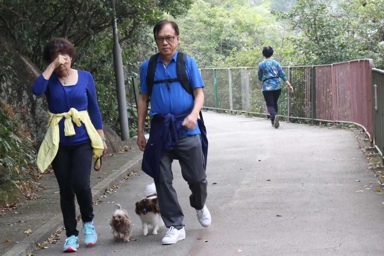 愛協網頁指中毒的犬隻大多是沒有牽上狗隻,呼籲狗主應時刻看管狗隻,並使用狗帶。(呂凝敏攝)